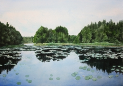 Öllesjön - The lake in the forest (series)