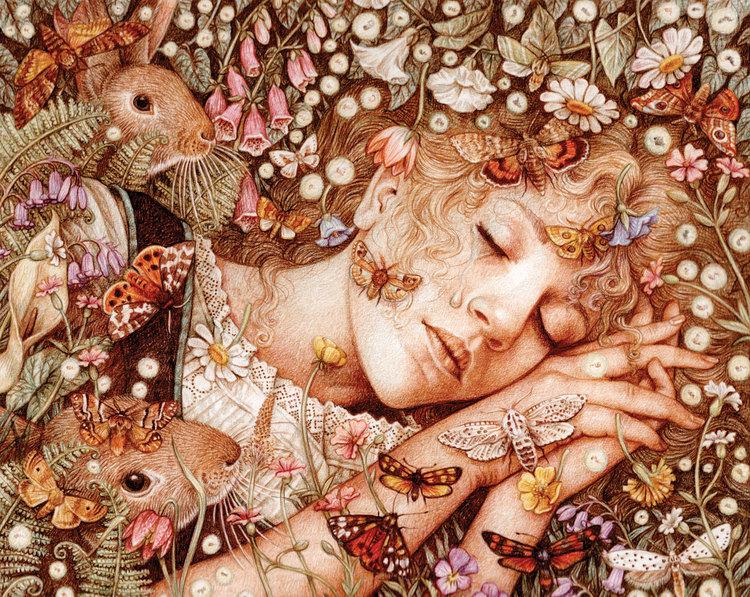 The Wild Swans (Princess Sleeps)